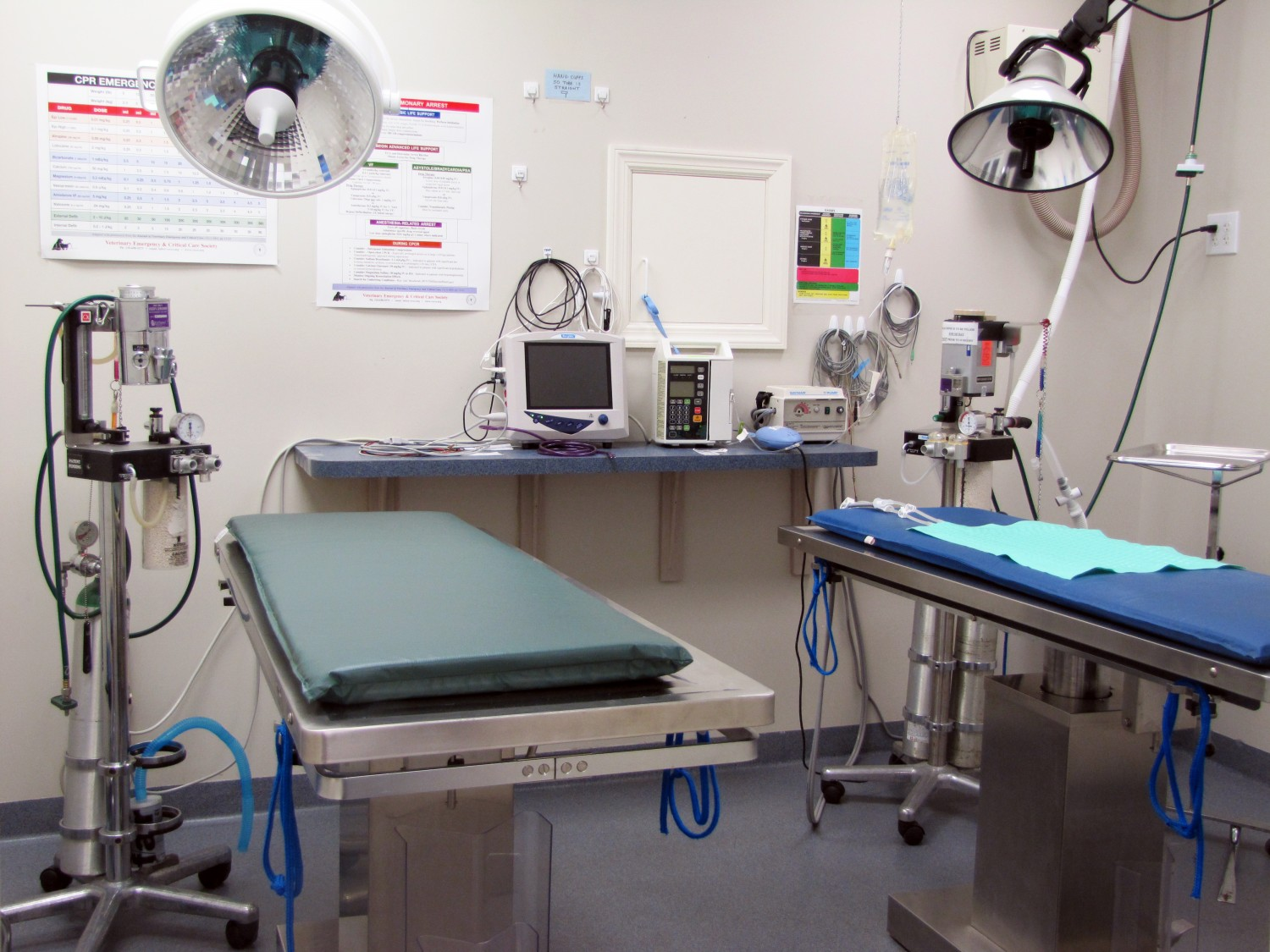 Quarry Ridge Animal Hospital's Sterile Surgical Suite